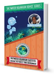Saltwater aquarium ebook Creating The Perfect Tank Environment
