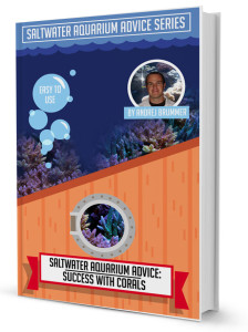 Saltwater Aquarium Ebook Success With Corals