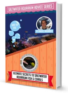 Ultimate Secrets to Saltwater Aquarium Fish and Invertebrates