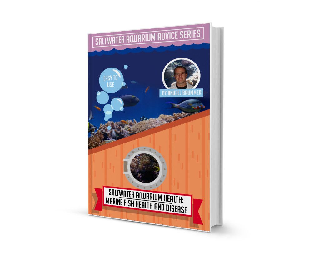Marine Fish Diseases Health and Disease