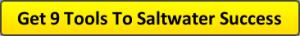 Saltwater Aquarium Advice 9 Free Tools