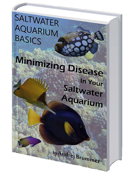 saltwater aquarium ebook free download